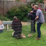 Fairbrother Farm On Channel 5 Bunnies