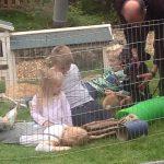 Fairbrother Farm On Channel 5 Children